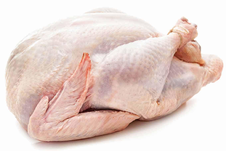 Raw fresh turkey, partially trussed